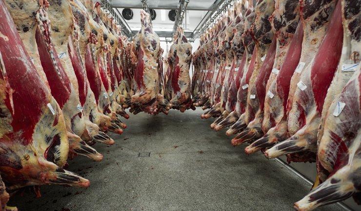 В Китае ждут российскую говядину