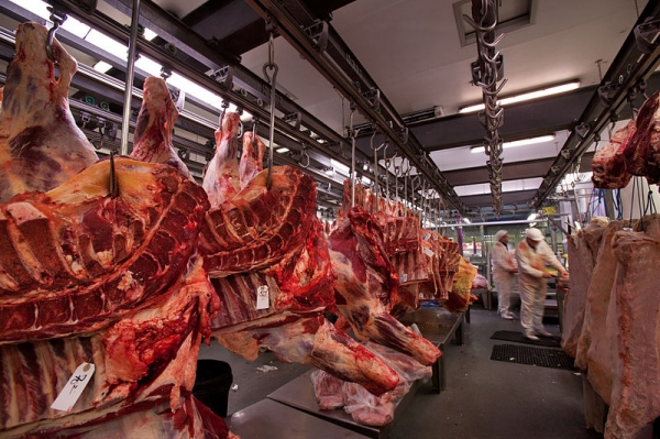 Ukrainian beef gets green light for export in Turkey