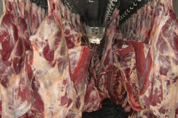 American corporation invests in the construction of a meat processing plant in Kazakhstan