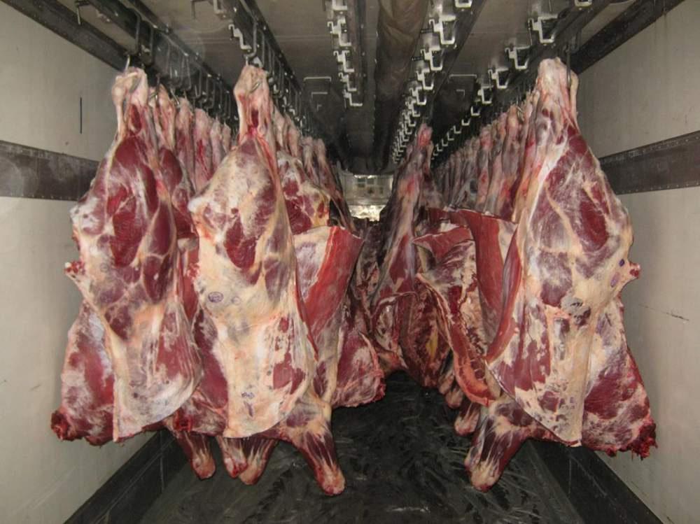 Производство мяса скота и птицы растет в Восточном Казахстане